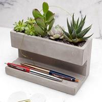 Kikkerland Concrete Desktop Planter Large