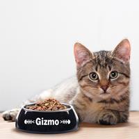 YourSurprise Kattenvoerbak - Zwart - 160 ml