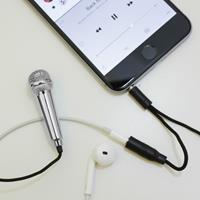 Kikkerland Mini karaoke microfoon voor smartphone