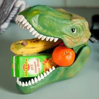 Suckuk Dinosaur Case