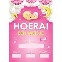 Shoppartners Mega poster Hoera een meisje!