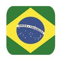 Shoppartners Bierviltjes Braziliaanse vlag vierkant 15 st