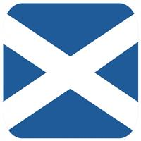 Shoppartners Bierviltjes Schotse vlag vierkant 15 st