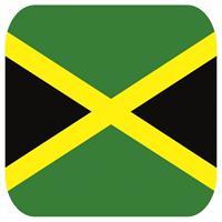 Shoppartners Bierviltjes Jamaicaanse vlag vierkant 15 st