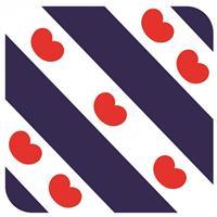 Shoppartners Bierviltjes Friese vlag vlag vierkant 15 st