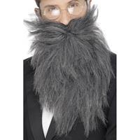 Smiffys Lange grijze baard en snor
