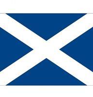 Shoppartners Vlag Schotland stickers