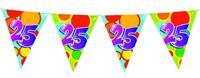 Vlaggenlijn leeftijd 25 jaar 10 meter
