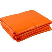 Koningsdag rommelmarkt oranje grondzeil 3 x 4 meter Oranje