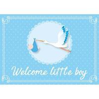 Shoppartners Jongen geboren ansichtkaart/wenskaart ooievaar kraamcadeau Blauw