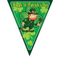 Vlaggenlijn St. Patricks Day Multi