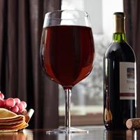 Tobar Groot Wijnglas 750 ML