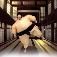 Funtime Sumo Wrestler Pak