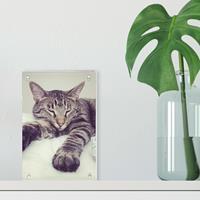 Acryl fotoblok - 10x15
