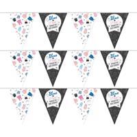 3x Vlaggenlijnen gender reveal party/feest slingers 10 meter Multi