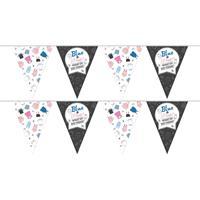 2x Vlaggenlijnen gender reveal party/feest slingers 10 meter Multi