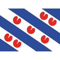 Shoppartners 5x Friesland vlag stickers 7.5 x 50 cm Multi