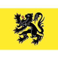 Shoppartners 5x Vlaanderen vlag stickers 7.5 x 10 cm Multi