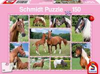 schmidt Prachtige Paarden 150 stukjes - Puzzel