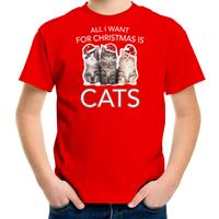 Bellatio Decorations Kitten Kerst t-shirt / outfit All i want for Christmas is cats rood voor kinderen