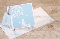 tadaaz Lichtblauw geboortekaartje met silhouet fietsend jongetje | Buromac 507036