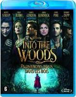 Disney Into the Woods