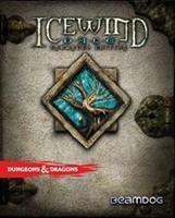 Deep Silver Icewind Dale Enhanced Edition