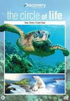 Circle Of Life - Seas, Rivers, Frozen Seas