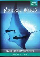 BBC earth - Natural world natural world collection queen of the manta rays (DVD)