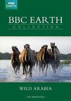 BBC earth collection - Wild arabia (DVD)