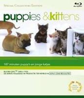 Blu-Ray Puppies & Kittens