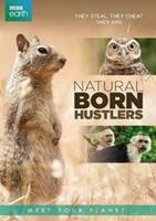 BBC earth - Natural born hustlers (DVD)