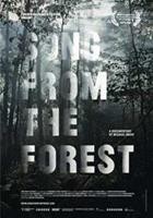 Song from the forest (DVD)