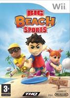 THQ Big Beach Sports
