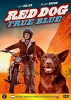 Red Dog - True Blue