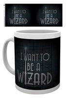 GYE I want to be a Wizard