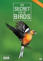 Secret life of birds (DVD)