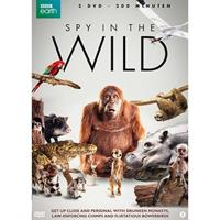 Spy in the wild (DVD)