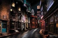 Pyramid International Harry Potter Poster Pack Diagon Alley 61 x 91 cm (5)