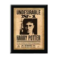 The Noble Collection Harry Potter Harry Potter Undesirable No. 1 Plaque