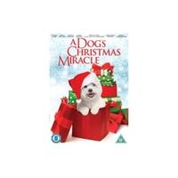 A Dog's Christmas Miracle DVD