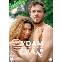 A'dam & E.V.A. (Amsterdam en vele anderen) - Seizoen 3 (DVD)
