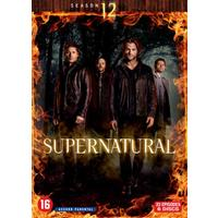 Supernatural - Seizoen 12 (DVD)