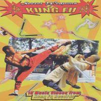 Secret Weapons Of Kung Fu