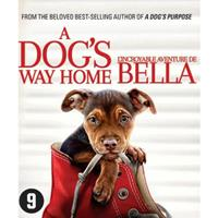 A Dog's Way Home Blu-ray