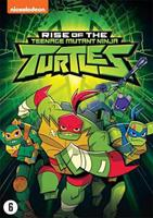 Rise of the teenage mutant ninja turtles (DVD)