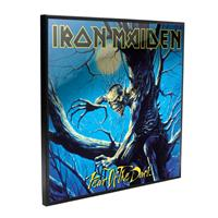 Nemesis Now Iron Maiden Crystal Clear Picture Fear of the Dark 32 x 32 cm