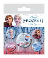 Pyramid International Frozen 2 Pin Badges 5-Pack Destiny
