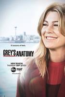 Grey's Anatomy - Seizoen 15