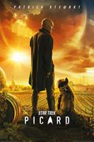 Pyramid International Star Trek: Picard Poster Pack Picard Number One 61 x 91 cm (5)